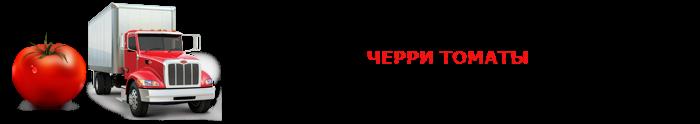 perevozka-pomidor-ttk-sl-007