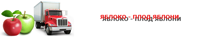 work-perevoz-applle-ttk-sl-com-psvuy-446