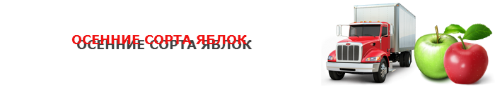 work-perevoz-applle-ttk-sl-com-psvuy-453