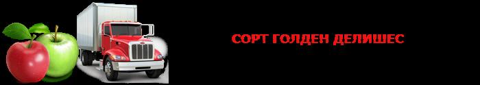 work-perevoz-applle-ttk-sl-com-psvuy-470