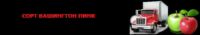 work-perevoz-applle-ttk-sl-com-psvuy-473
