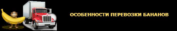work-perevoz-musa-bananu-ttk-sl-com-047-03
