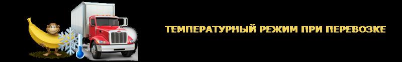 work-perevoz-musa-bananu-ttk-sl-com-047-039