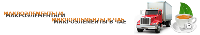 work-perevoz-tea-ttk-sl-com-chai-038