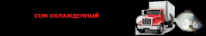 work-perevoz-ohlagdennaya-ruba-001-088-014