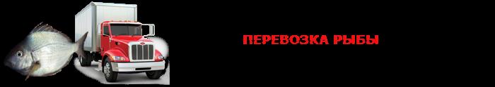 work-perevoz-ohlagdennaya-ruba-001-088-04