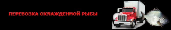 work-perevoz-ohlagdennaya-ruba-001-088-05