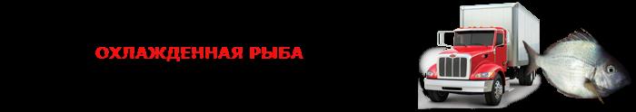 work-perevoz-ohlagdennaya-ruba-001-088-07