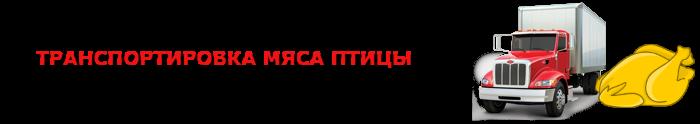 work-perevoz-505-zamorogennayu-kurica-ttk-sl-com-0013