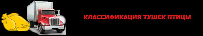 work-perevoz-505-zamorogennayu-kurica-ttk-sl-com-007