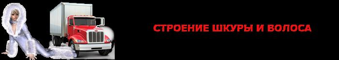 work-perevoz-shubu-meha-ttk-sl-sobol-meha-0012