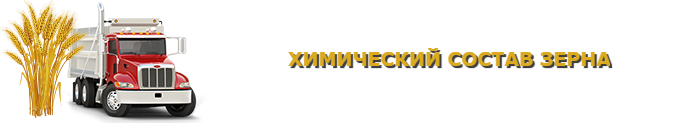 ref-izoterm-bort-negabarit-ttk-sl-com-img-555-png-07000-ttk-sl-com-img-1047-015