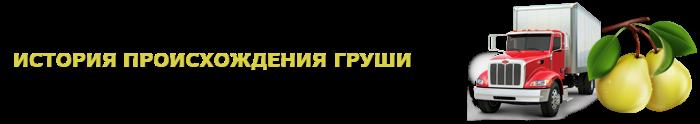 img-000135-o-grushe-citrus-ttk-sl-com-grushi-903