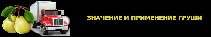 img-000135-o-grushe-citrus-ttk-sl-com-grushi-904