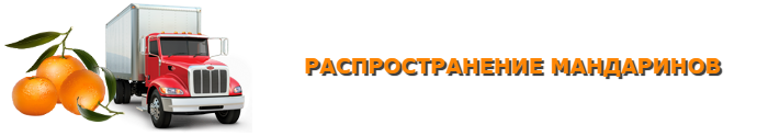 img-555-o-mandarinah-citrusovue-ttk-sl-com-102
