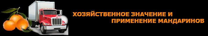 img-555-o-mandarinah-citrusovue-ttk-sl-com-104