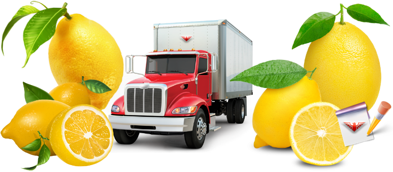 img-limon-lime-citrys-ttk-sl-com-518