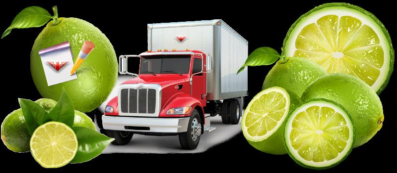 img-limon-lime-citrys-ttk-sl-com-519