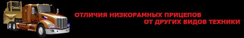 neg-img-ipg-rus-ttksl-84997557224-2563031-trall-3