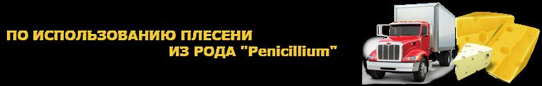 img-o-sure-chees-ttk-sl-saptrans-ru-perevozka-chhheeez-1009