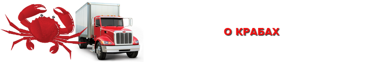 img-perevozka-zamorogennuh-crabov-ttk-sl-saptrans-ru-48-47-2000