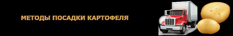 potatoes-perevozka-ttk-sl-com-kartofeli-rus-80
