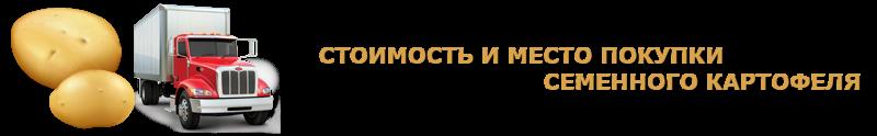 potatoes-perevozka-ttk-sl-com-kartofeli-rus-81